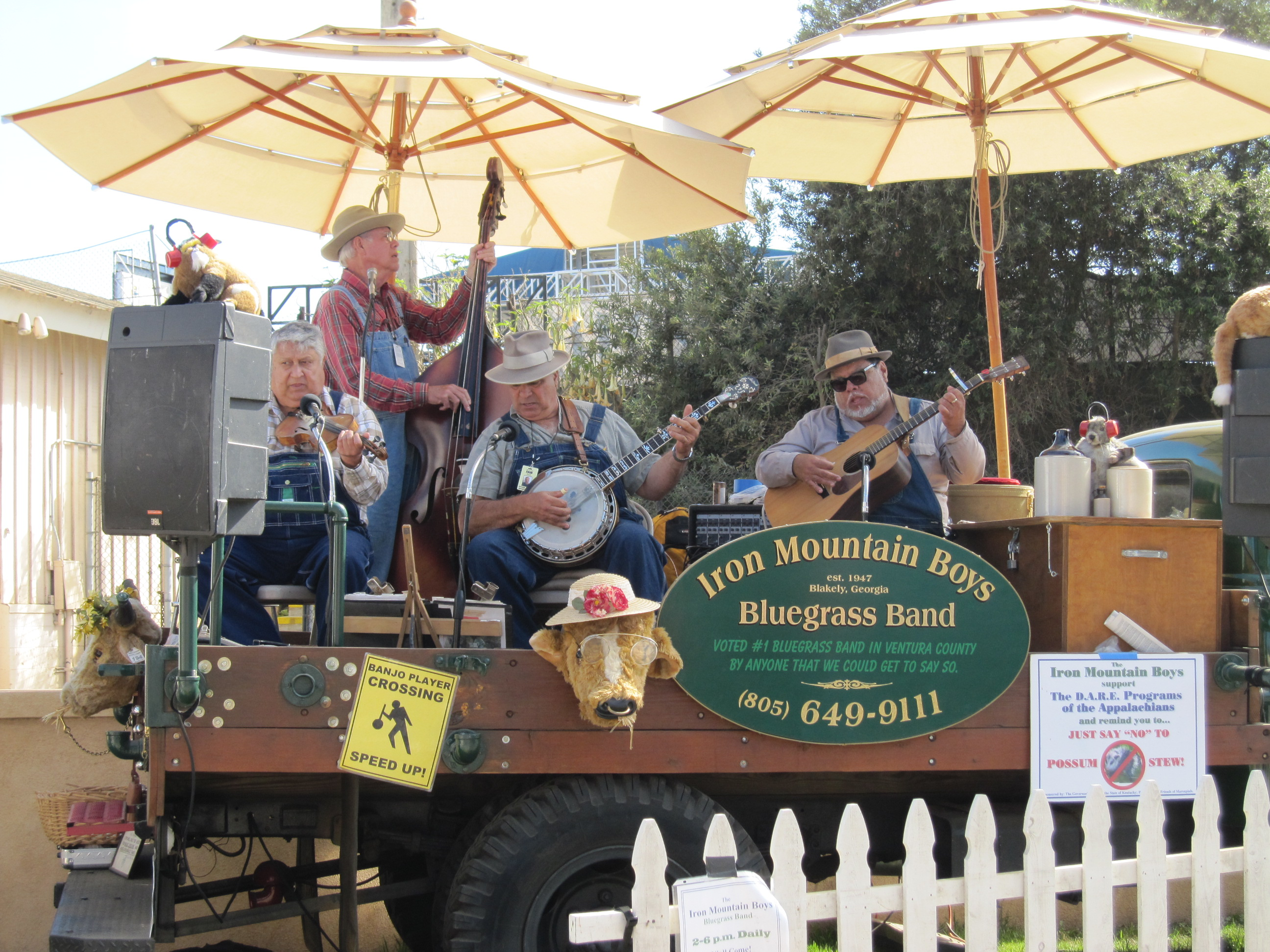 The good ol' boys and their Bluegrass Band